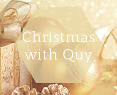 Christmas with Quy