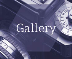 Gallery of Jewellery